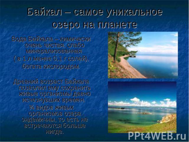 Байкал – самое уникальное озеро на планете Вода Байкала – химически очень чистая, слабо минерализованная ( в 1 л менее 0,1 г солей), богата кислородом. Древний возраст Байкала позволил ему сохранить живые организмы давно исчезнувших времен. ѕ видов …