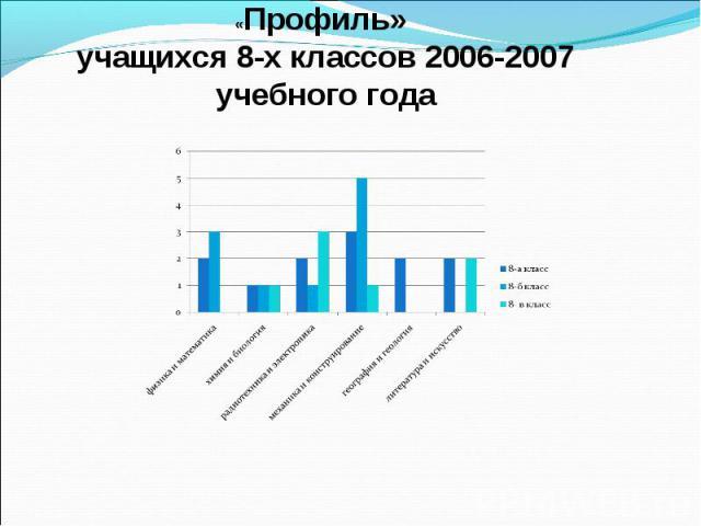 «Профиль» учащихся 8-х классов 2006-2007 учебного года