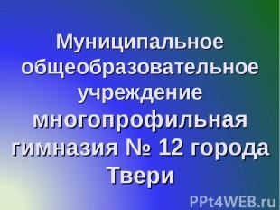 Муниципальное общеобразовательное учреждение многопрофильная гимназия № 12 город