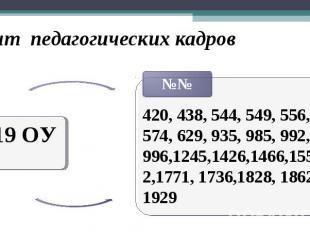 Опыт педагогических кадров 19 ОУ 420, 438, 544, 549, 556, 574, 629, 935, 985, 99