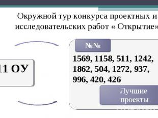 Окружной тур конкурса проектных и исследовательских работ « Открытие» 11 ОУ 1569
