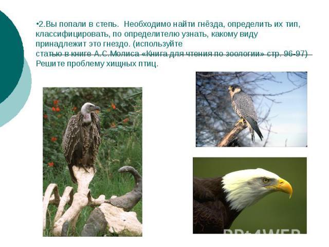 2.Вы попали в степь. Необходимо найти гнёзда, определить их тип, классифицировать, по определителю узнать, какому виду принадлежит это гнездо. (используйте статью в книге А.С.Молиса «Книга для чтения по зоологии» стр. 96-97) Решите проблему хищных птиц.