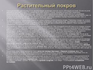 Урала достаточно однообразен. В его формировании принимает участие около 1600 ви