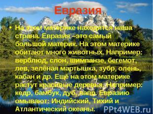 Евразия На этом материке находится наша страна. Евразия –это самый большой матер