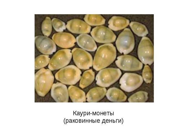 Каури-монеты (раковинные деньги)