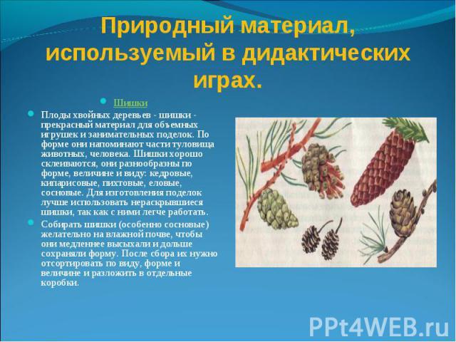Природный материал, используемый в дидактических играх. Шишки Плоды хвойных деревьев - шишки - прекрасный материал для объемных игрушек и занимательных поделок. По форме они напоминают части туловища животных, человека. Шишки хорошо склеиваются, они…