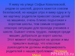 Я живу на улице Софьи Ковалевской, рядом со школой, дорога кажется совсем безопа