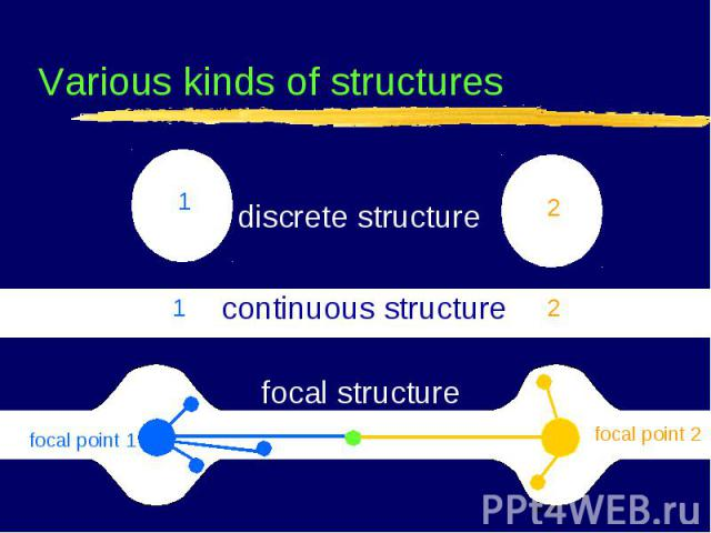 ▐ focal point 1 focal point 2 ▐ continuous structure focal structure 1 2 1 2 Various kinds of structures discrete structure