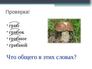 Проверка! гриб грибок грибное грибной Что общего в этих словах?