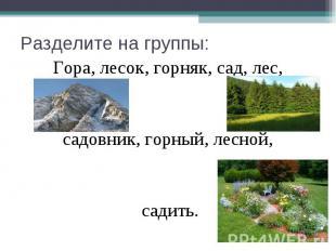 Разделите на группы: Гора, лесок, горняк, сад, лес, садовник, горный, лесной, са