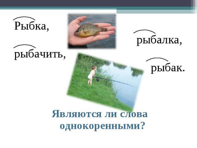 Рыбка, рыбалка, рыбачить, рыбак. Являются ли слова однокоренными?