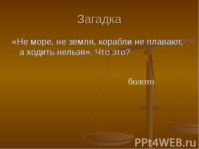 Загадка «Не море, не земля, корабли не плавают, а ходить нельзя». Что это? болото
