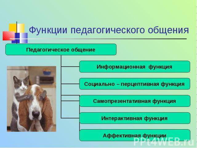 Функции педагогического общения Педагогическое общение Информационная функция Социально – перцептивная функция Самопрезентативная функция Интерактивная функция Аффективная функции