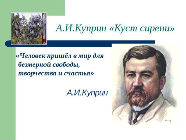 А.И.Куприн «Куст сирени» «Человек пришёл в мир для безмерной свободы, творчества и счастья» А.И.Куприн