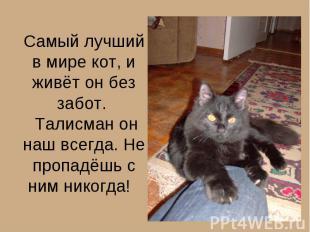 Самый лучший в мире кот, и живёт он без забот. Талисман он наш всегда. Не пропад