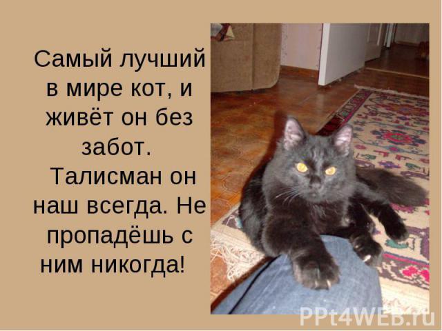 Самый лучший в мире кот, и живёт он без забот. Талисман он наш всегда. Не пропадёшь с ним никогда!