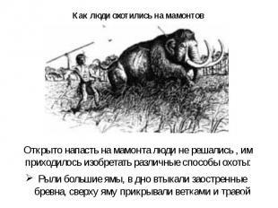 Как люди охотились на мамонтов Открыто напасть на мамонта люди не решались, им п