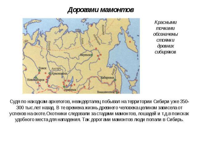 Дорогами мамонтов Судя по находкам архелогов, неандерталец побывал на территории Сибири уже 350-300 тыс.лет назад. В те времена жизнь древнего человека целиком зависела от успехов на охоте.Охотники следовали за стадами мамонтов, лошадей и т.д.в поис…