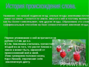 Название –по низкой подвеске ягод: спелые ягоды земляники почти лежат на земле,