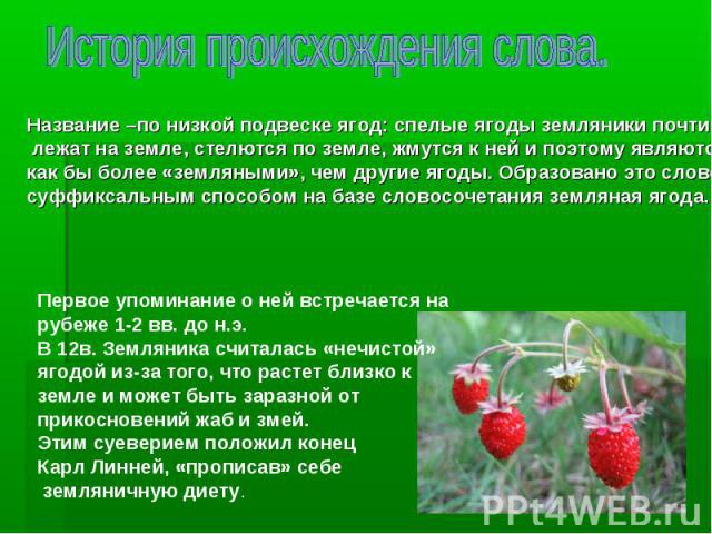 Название –по низкой подвеске ягод: спелые ягоды земляники почти лежат на земле, стелются по земле, жмутся к ней и поэтому являются лежат на земле, стелются по земле, жмутся к ней и поэтому являются как бы более «земляными», чем другие ягоды. Образов…
