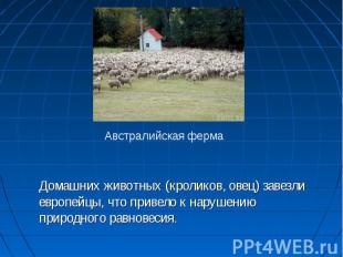 Домашних животных (кроликов, овец) завезли европейцы, что привело к нарушению пр