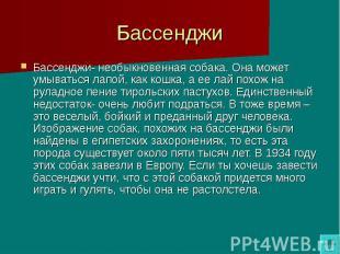 Бассенджи Бассенджи- необыкновенная собака. Она может умываться лапой, как кошка