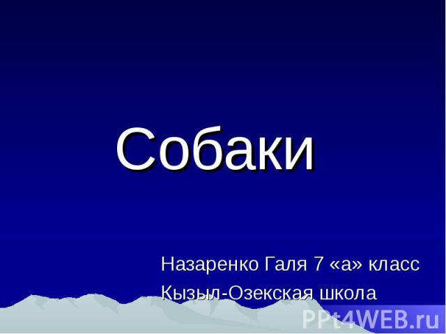 Назаренко Галя 7 «а» класс Кызыл-Озекская школа Собаки