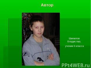 Автор Шипилов Владислав, ученик 6 класса