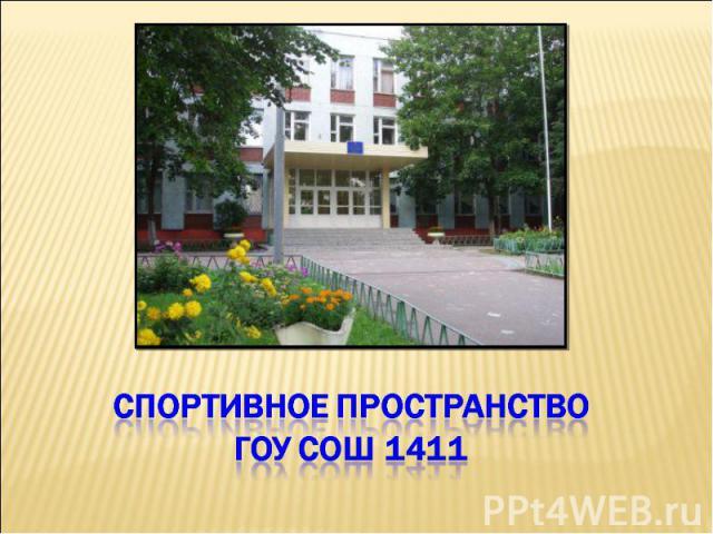 Спортивное пространство ГОУ СОШ 1411