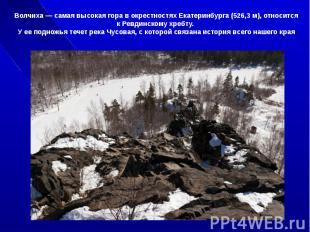 Волчиха самая высокая гора в окрестностях Екатеринбурга (526,3 м ), относится к