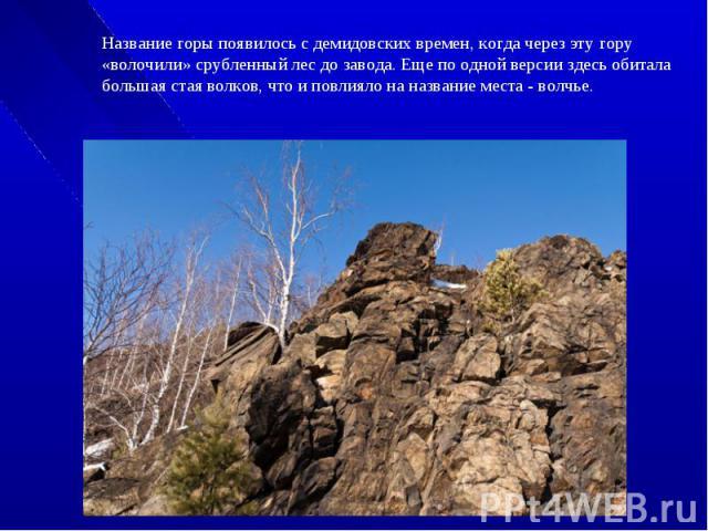 Название горы появилось с демидовских времен, когда через эту гору «волочили» срубленный лес до завода. Еще по одной версии здесь обитала большая стая волков, что и повлияло на название места - волчье.