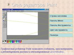Строка заголовка Панель Меню Панель Инструменты Цвет инструмента Палитра Графиче
