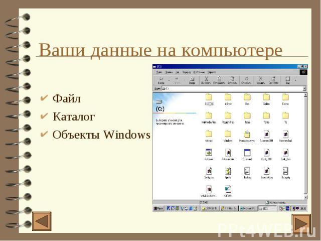 Ваши данные на компьютере 4 Файл 4 Каталог 4 Объекты Windows