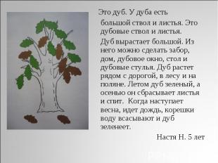 Это дуб. У дуба есть большой ствол и листья. Это дубовые ствол и листья. Дуб выр
