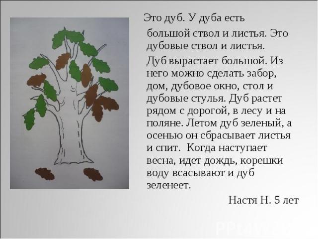 Это дуб. У дуба есть большой ствол и листья. Это дубовые ствол и листья. Дуб вырастает большой. Из него можно сделать забор, дом, дубовое окно, стол и дубовые стулья. Дуб растет рядом с дорогой, в лесу и на поляне. Летом дуб зеленый, а осенью он сбр…