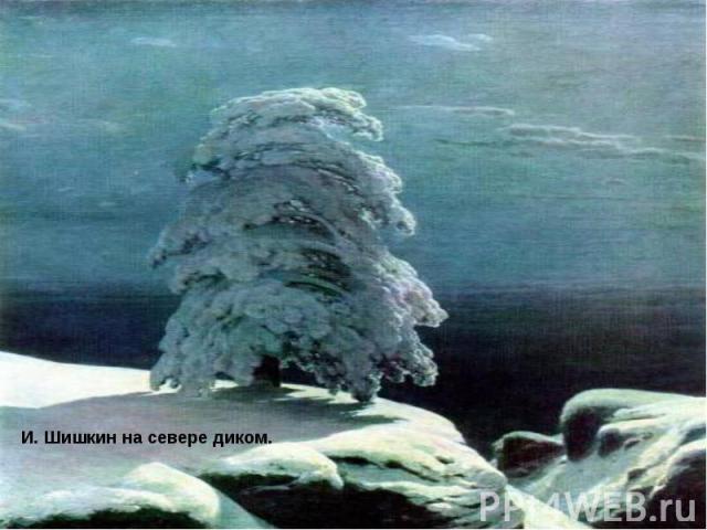 И. Шишкин на севере диком.