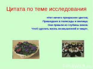Цитата по теме исследования «Нет ничего прекраснее цветов, Пришедших в палисады