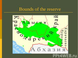Bounds of the reserve