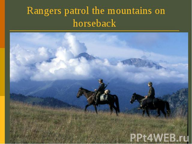 Rangers patrol the mountains on horseback