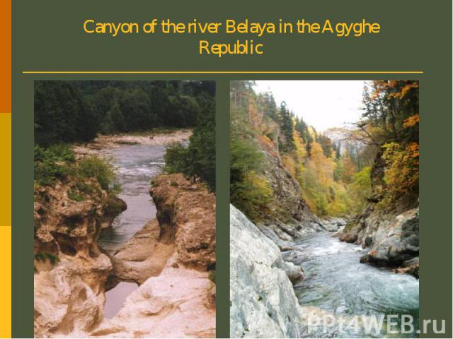 Canyon of the river Belaya in the Agyghe Republic
