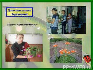 Дополнительное образованиеКружок «Цветоводство»