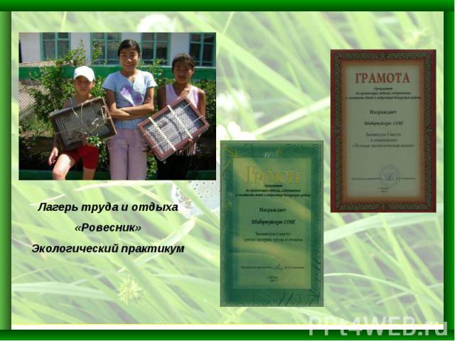Лагерь труда и отдыха«Ровесник»Экологический практикум