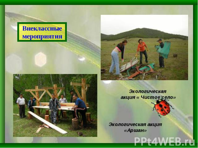 Внеклассные мероприятияЭкологическая акция « Чистое село»Экологическая акция «Аршан»