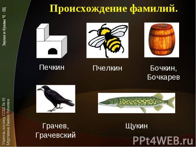 Происхождение фамилий.ПечкинПчелкинБочкин,БочкаревЩукинГрачев,Грачевский