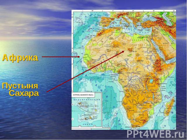 Африка Пустыня Сахара