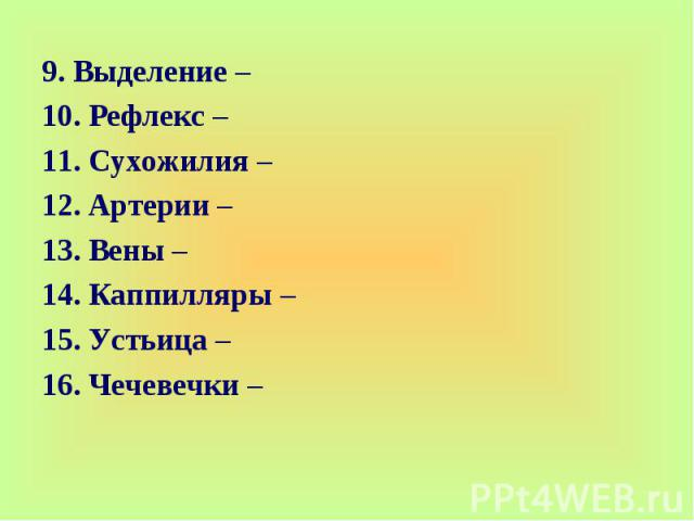 9. Выделение – 10. Рефлекс –11. Сухожилия –12. Артерии –13. Вены – 14. Каппилляры – 15. Устьица –16. Чечевечки –