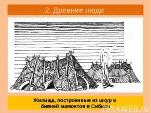 2. Древние люди «Мамонты на Русской равнине в Сибири» Стр. 11 Какую роль играли