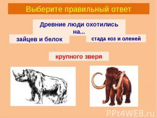 Выберите правильный ответ Древние люди охотились на... зайцев и белок стада коз