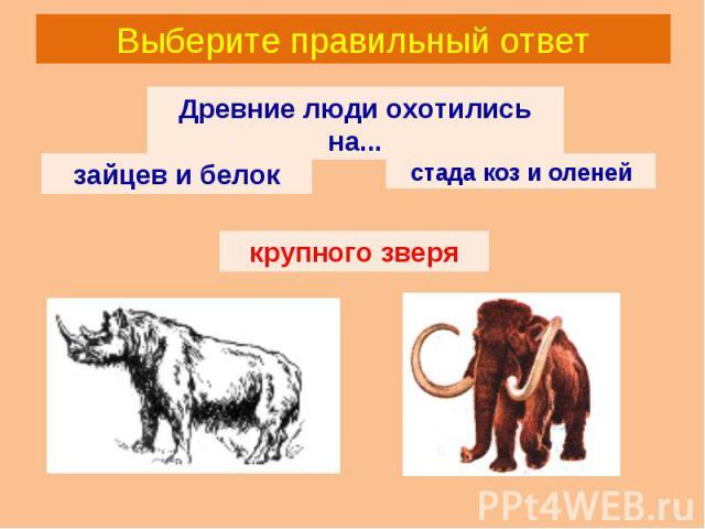 Выберите правильный ответ Древние люди охотились на... зайцев и белок стада коз и оленей крупного зверя