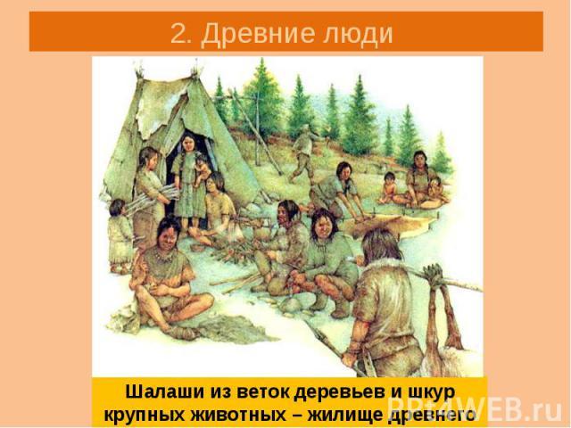 2. Древние люди Шалаши из веток деревьев и шкур крупных животных – жилище древнего человека